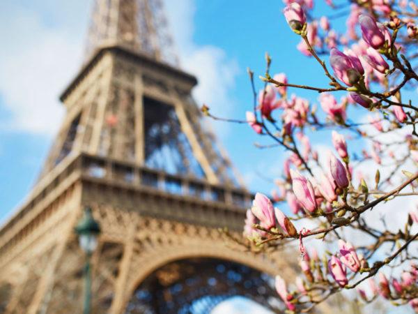 Франция, Париж, май 2019